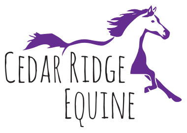 CRE Horse Riding Lessons Montana Logo