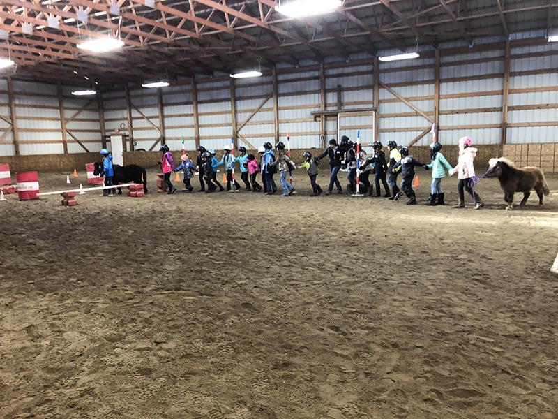 CRE Youth Adult Horse Workshops Bozeman