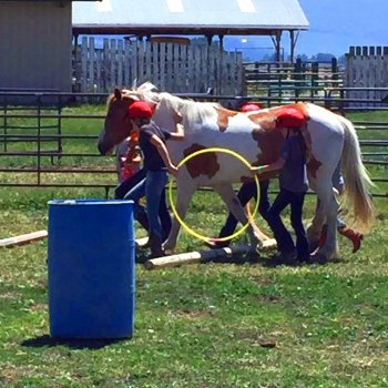 Cedar Ridge Equine Events